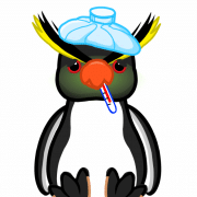 Rockhopper_Penguin_Sick-640x807